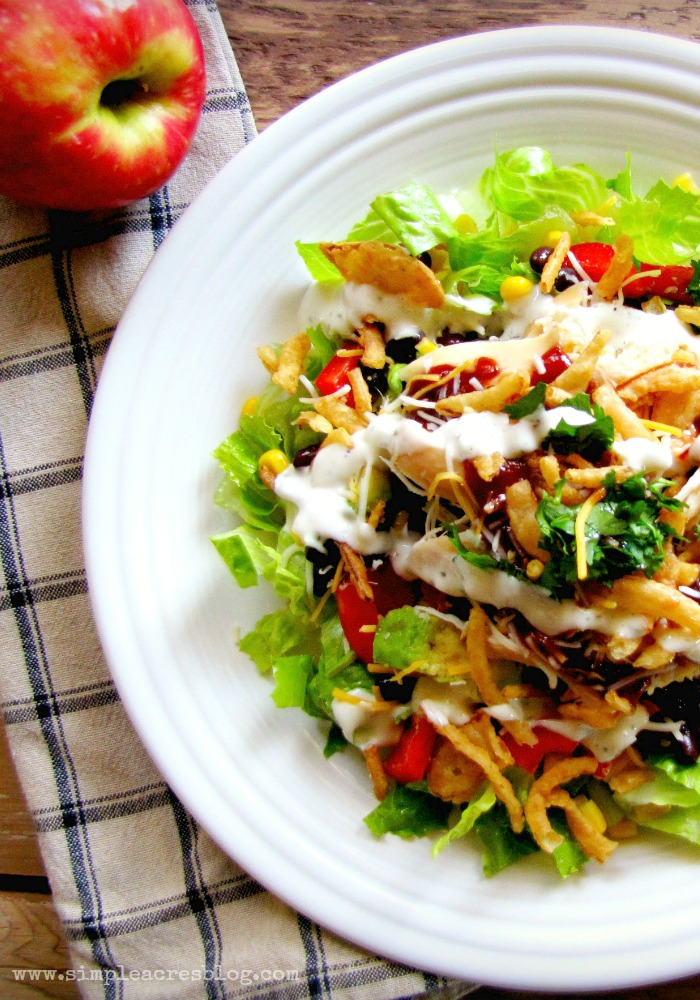 Bbq chicken salad as a healthy family meal.