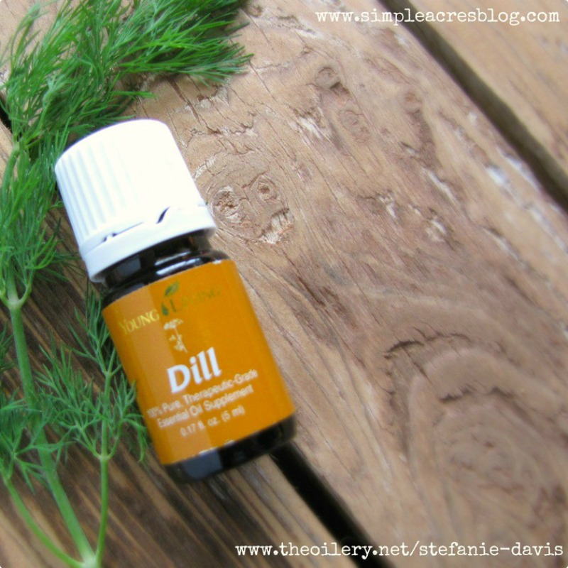 Dill Essential Oil Young Living