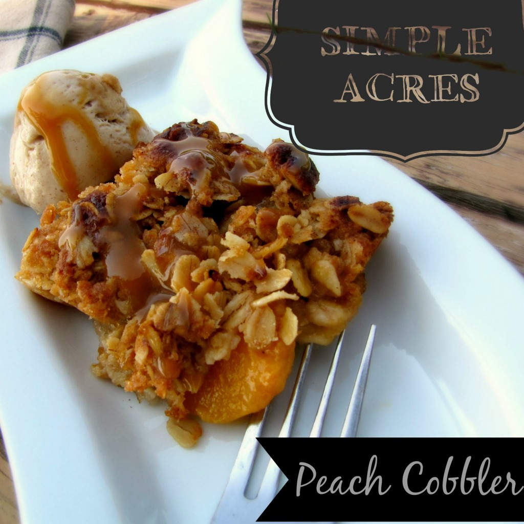 the best peach cobbler with oatmeal crumble