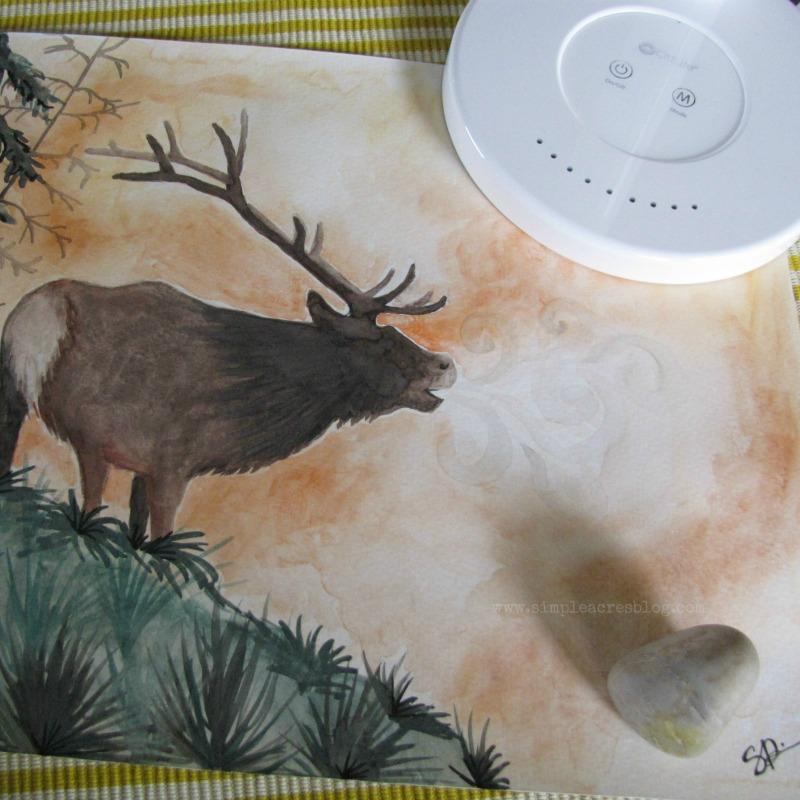 elk watercolor before OttLite
