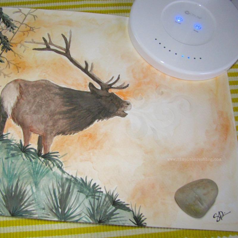elk watercolor with OttLite on