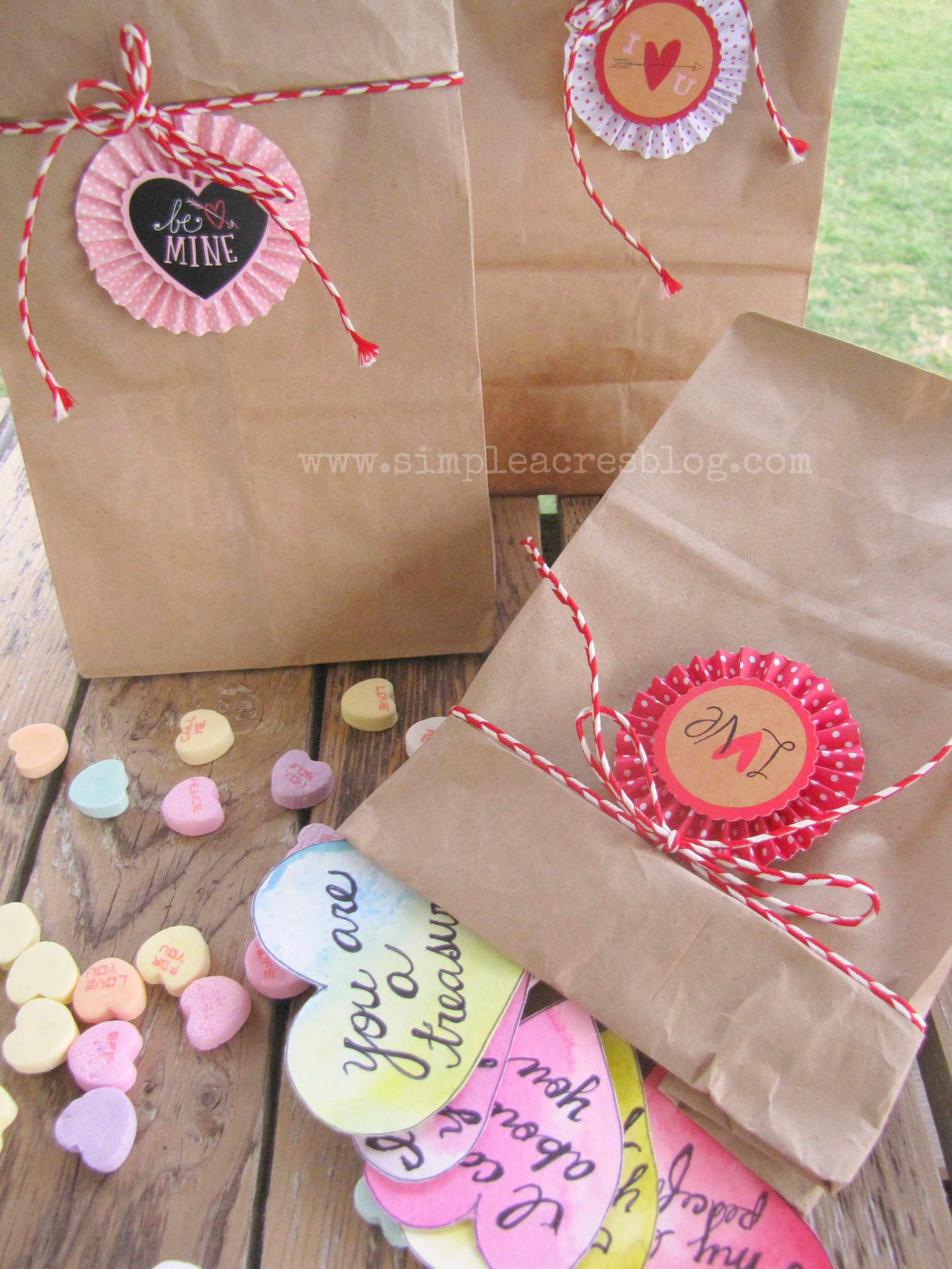 Valentine card bags