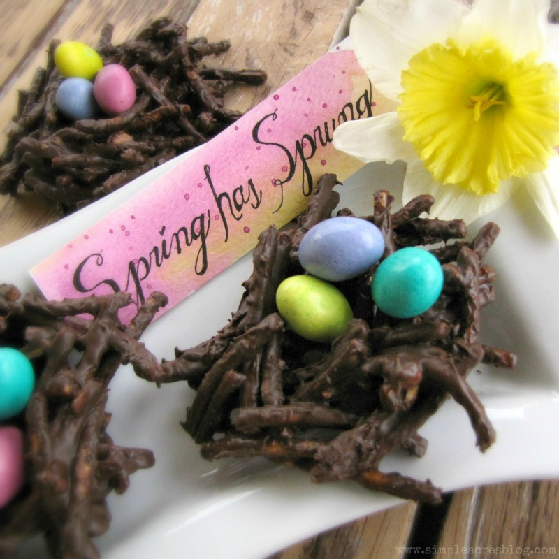 chocolate spring nests