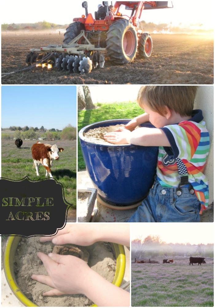 farm life and gardening