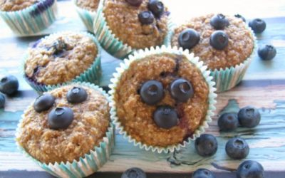 The Best Blueberry Applesauce Bran Muffins