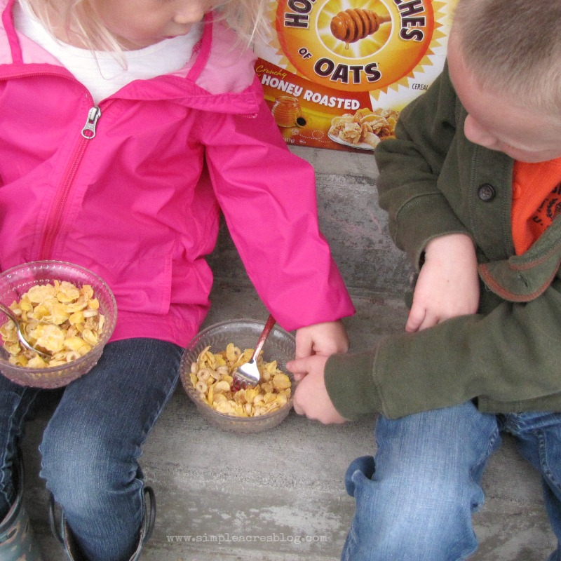 fighting over honey bunches of oats