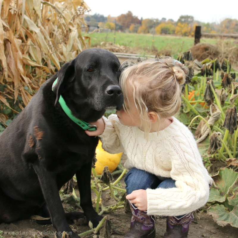 puppy-love-on-the-farm