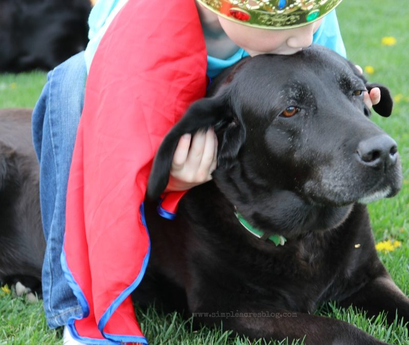 5 Ways Pets Can Enrich Your Kids Life